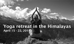 himalayas yoga retreat